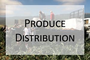 Produce_Distribution